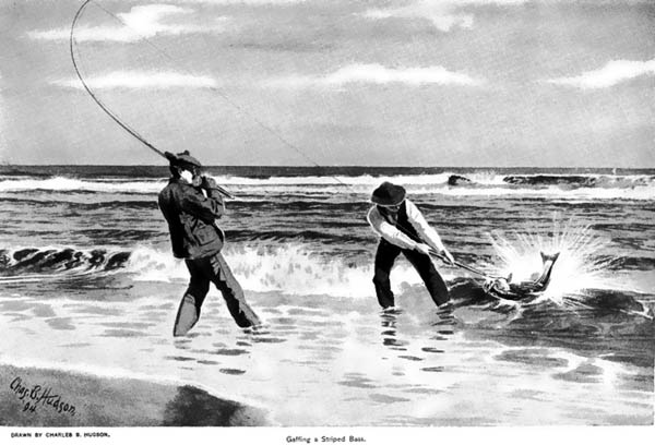 Getting a Striped Bass (1894).